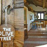 The Olive Tree apt. living room with kitchen